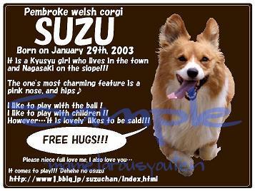 suzu(hasiru)bag-2.jpg