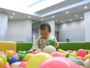 20080222_01.jpg
