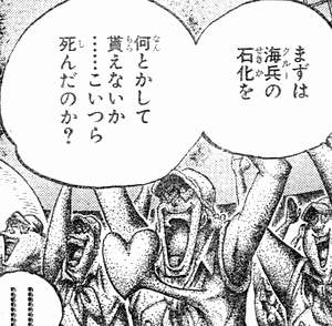 rufi_doku_cure_16.jpg
