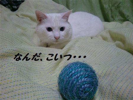 012_R.jpg