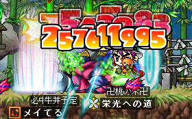 ss0493.png