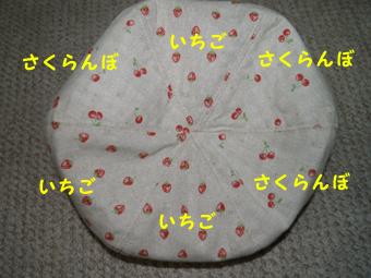 090414_ichi.jpg