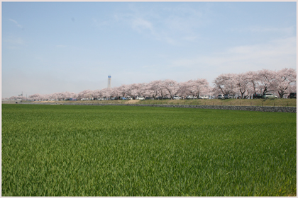 funakawaberi2009-4-3.jpg