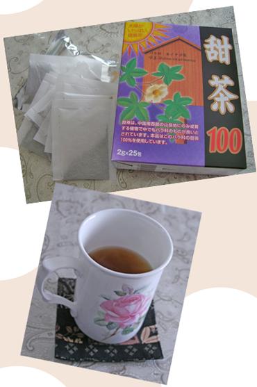 tenntya2009-2-pakku.jpg