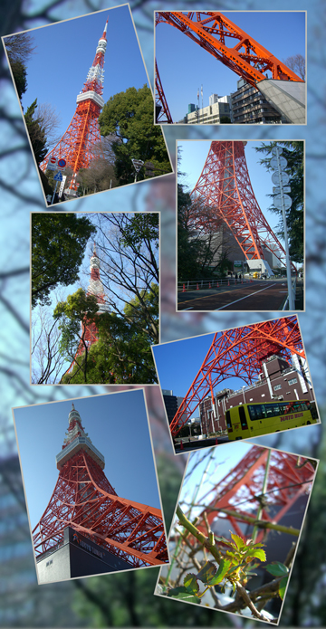 tokyotawa-2009--2.jpg