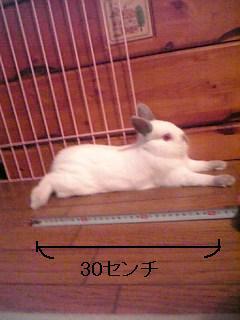20060628014408.jpg