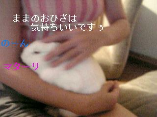 20060717132405.jpg