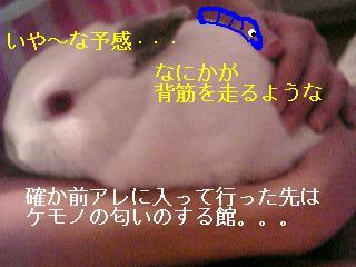 20060717132803.jpg