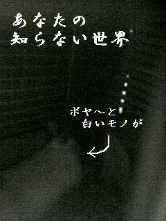 20060820024553.jpg