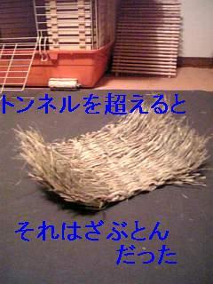 20060822010613.jpg