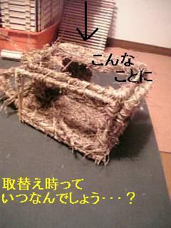 20060822010718.jpg