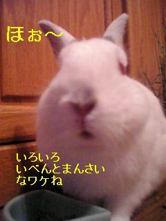 20061013014538.jpg