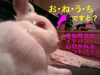 20061013015709.jpg