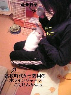 20070106183941.jpg