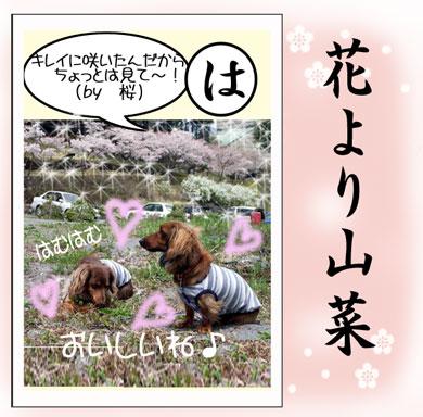 karuta-ha.jpg