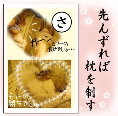 karuta-sa_20080222094259.jpg