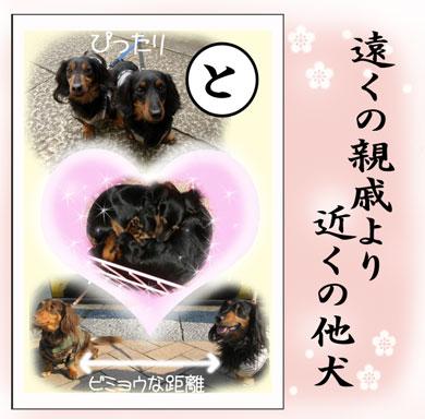 karuta-to_20080218134037.jpg