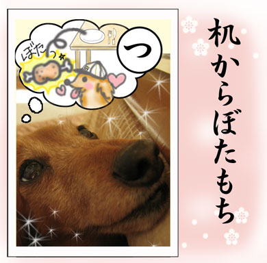karuta-tsu.jpg