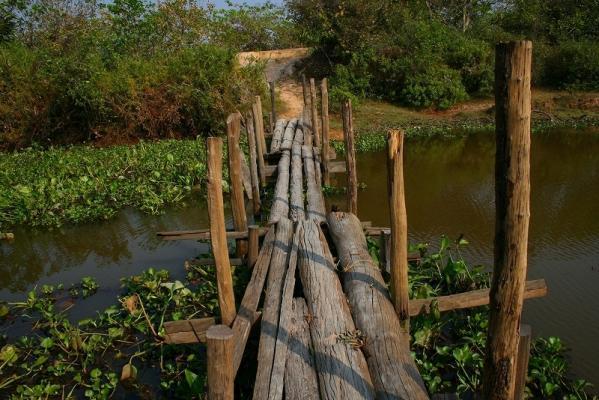 タイゾーへの橋