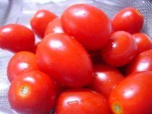 とれたてトマト