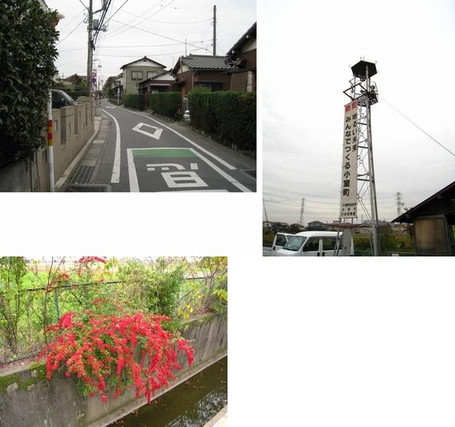 IMG_1293散歩1
