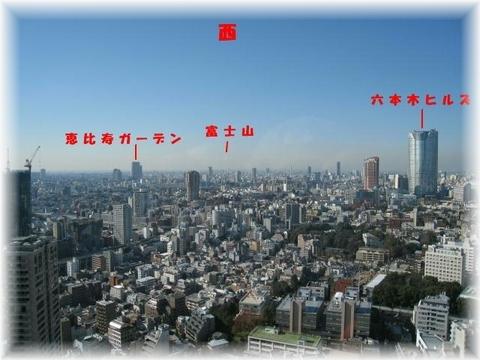IMG_1693東京タワー西