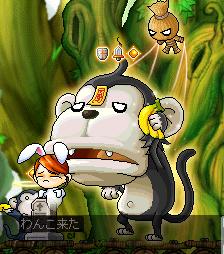 猿にやられるw
