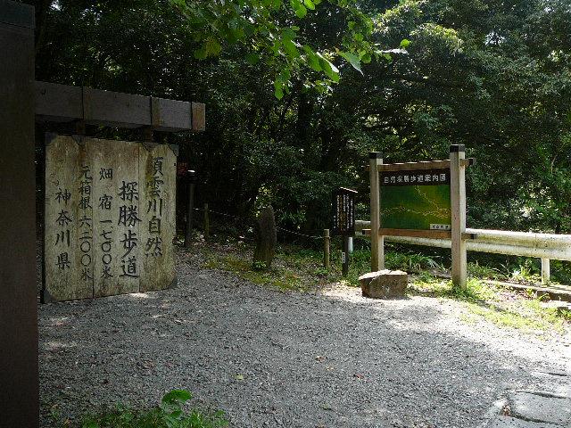 箱根旧街道 須雲川