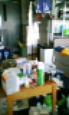 20070809115044.jpg