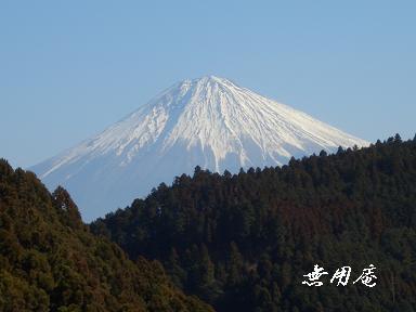 林道より富士を臨む