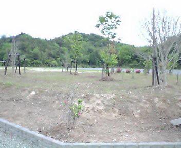 20060510154021.jpg