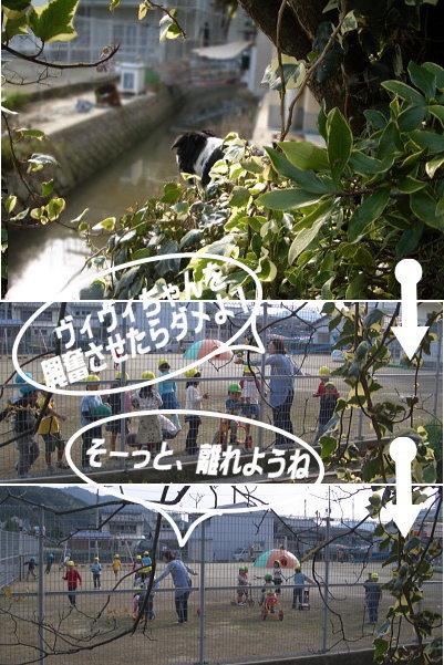 20061101155130.jpg