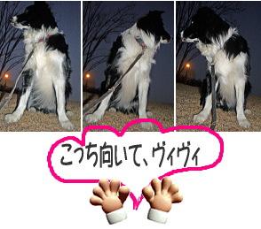20070111014620.jpg