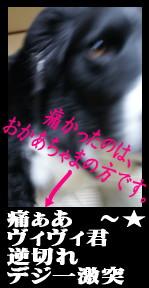 20070418220558.jpg