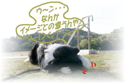 20070420164910.jpg
