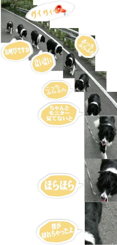 20070925141923.jpg