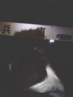 20071011133208.jpg