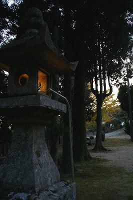 1125諭鶴羽神社灯篭と銀杏