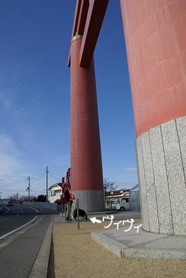 0103おのころ神社初詣7