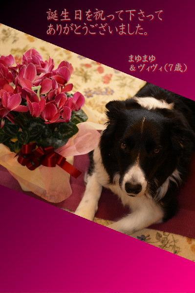 0123誕生日お礼カード
