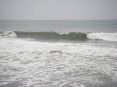 20081025-1.jpg