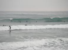 20081116-1.jpg