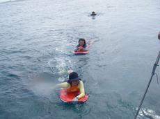 2008mo4-10.jpg
