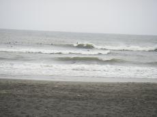 20090516-1.jpg