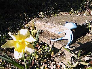 2009年03月16日_GRP_0018