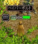 20061120024133.jpg