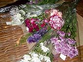 20060318011607.jpg