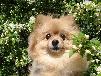 お花見できるなんて~♪