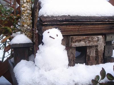 雪だるまできたよ~