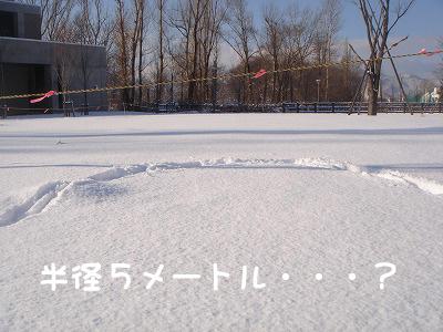 除雪範囲は、半径5メートル